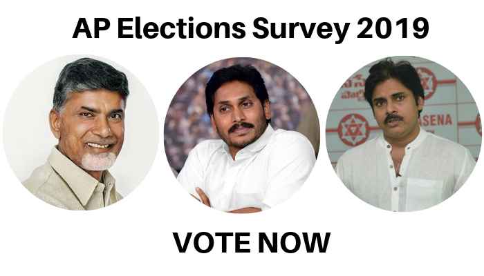 AP Elections Survey 2019